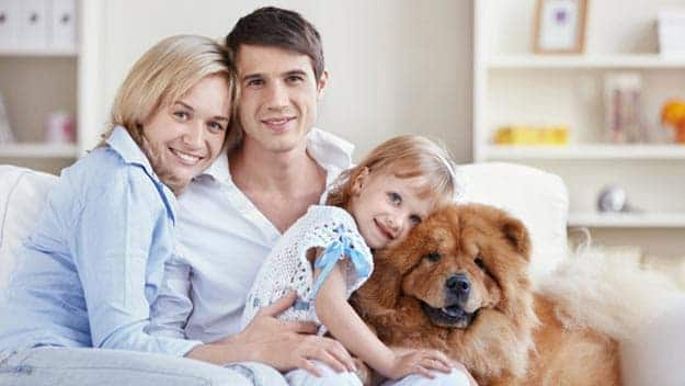 Wills & Trusts dog-young-family Direct Wills Ely
